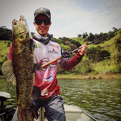Leonardo Dallago com uma bela traíra fisgada no Sul. #pescaamadora #pesqueesolte #baitcast #fly #pescaesportiva #sportfishing #fishing #angler #anglerapproved #monsterfish #bigfish #bassmaniacs #catchandrelease #traira #santacatarina #flyfishing #fish #ba