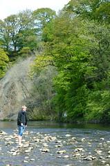 Johannes går på vattnet