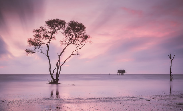 A sweet morning - before sunrise - Vietnam