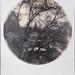 snow globe by Lisa Toboz