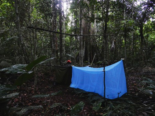 Survival sleep in Madidi National Park - Amazon forest - Bolivia