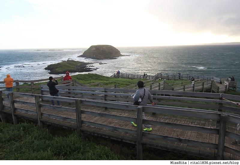 KKDAY 墨爾本自由行 melbourne gowesttours kkDAY墨爾本 墨爾本企鵝 澳洲自助 墨爾本自助 菲利浦島 菲利浦島交通 墨爾本必去 墨爾本酒莊 月光野生動物 Nobbies 墨爾本企鵝歸巢 墨爾本一日遊 菲利普島一日遊,小企鵝歸巢遊行89