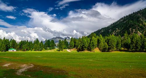 travel blue sky green nature beautiful landscape nikon awesome meadow rama naturephotography naturelover travelphotography beautifulpakistan nikontop