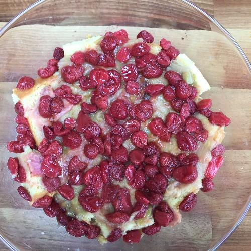 Rhubarb strawberry trifle in progress