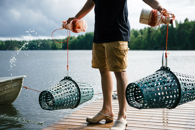 Finland_Crayfish-2231