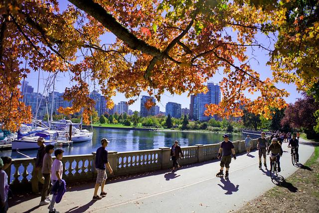 Autumn, Stanley Park Oct, 2015