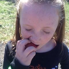 #omnomnom #apple #freckles