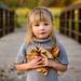 Fall Harvest by Jennifer Kapala Photography