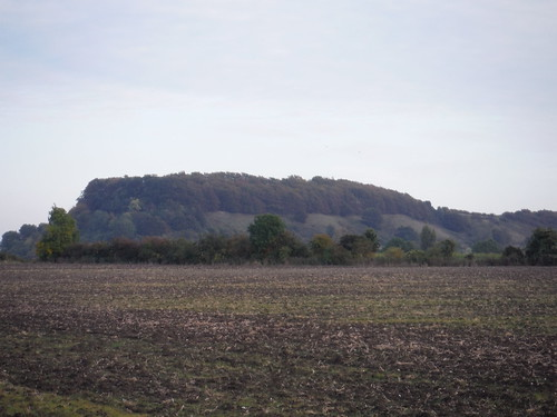 Sharpenhoe Iron Age Hillfort Site, from near Harlington