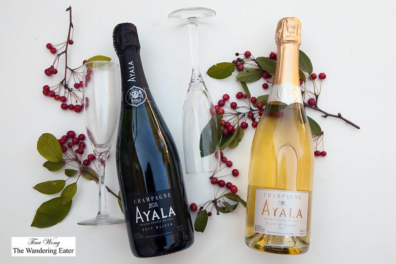 Champagne Ayala: Brut Majeur & Blanc de Blancs