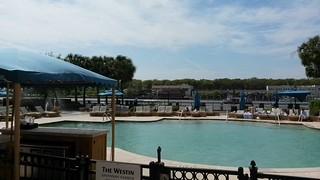 pool life