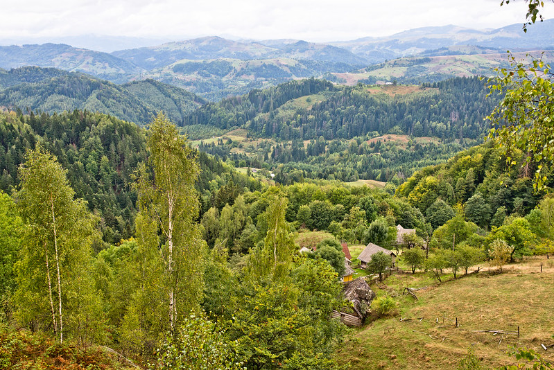 Carpathian Mountains near Babyn