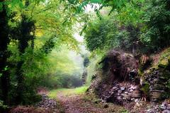 Chemin des Barlettes