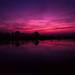 Twilight. by wojszyca