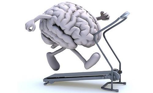 kemampuan otak