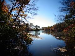 Mill Pond Park -- Autumn (101)