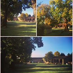 Good morning! Un grand bonjour de La Grosse Talle ! #autumn #automne #lagrossetalle #paysmellois #deuxsevres #poitoucharentes #nouvelleaquitaine #maisondevacances #vacances