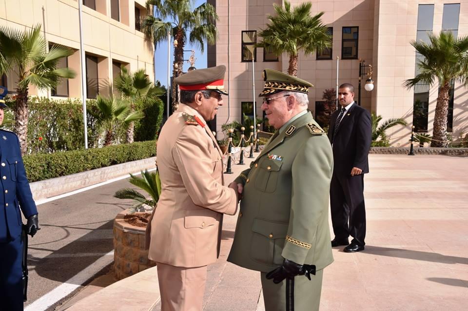 الجزائر : صلاحيات نائب وزير الدفاع الوطني - صفحة 5 30664469632_806cd705f4_o