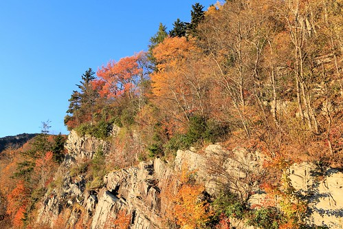 photosbymch landscape fallcolors autumn linncoveviaduct grandfathermountain blueridgeparkway northcarolina usa canon 5dmkiii 2016 trees leaves mountains outdoors fall