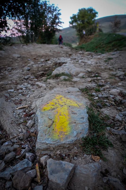 Camino-314