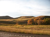 Fall on Highway 21