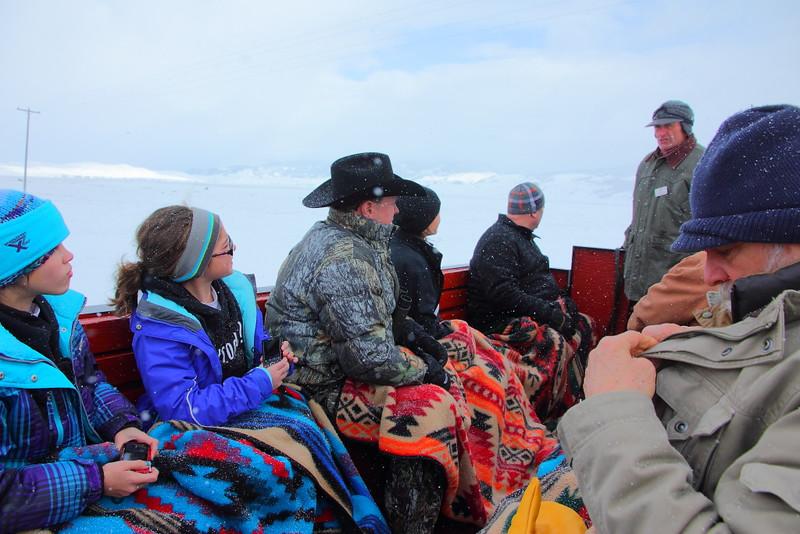 IMG_3879 Sleigh Ride, National Elk Refuge