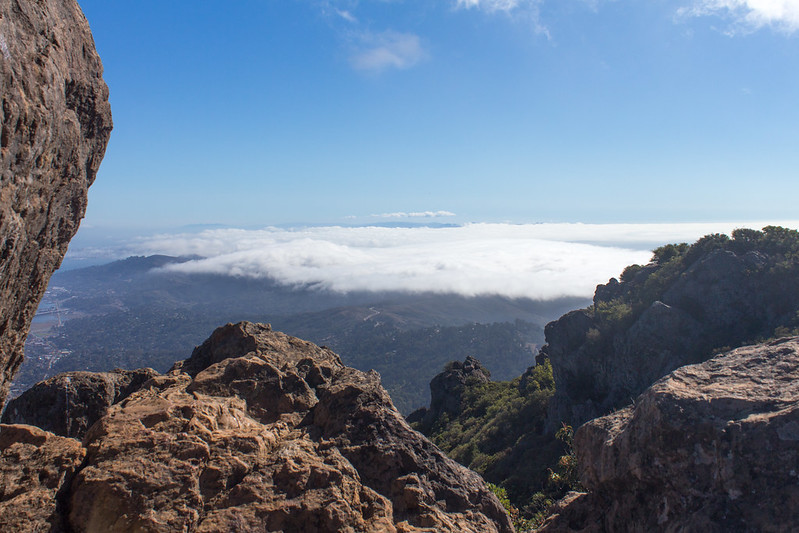 10.25. Mt Tam East peak hike