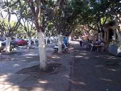 Cafe near the park