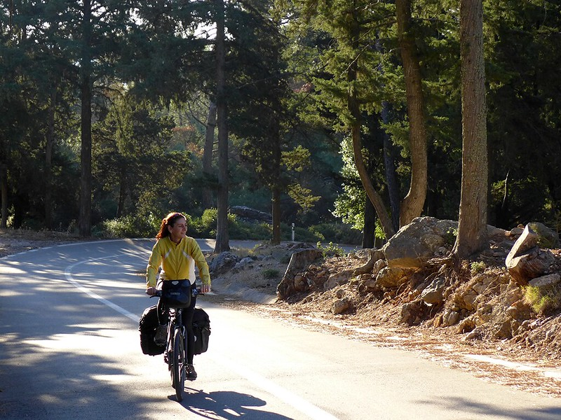 4 salakos rhodes pine forest