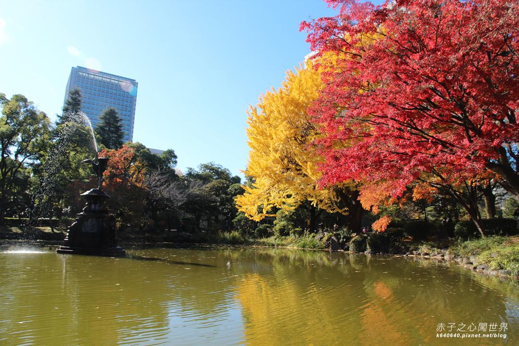 東京賞楓-日比谷公園24
