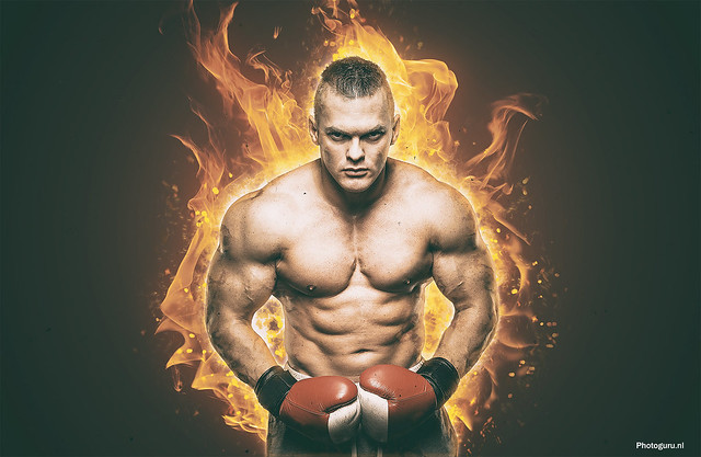 bokser davy