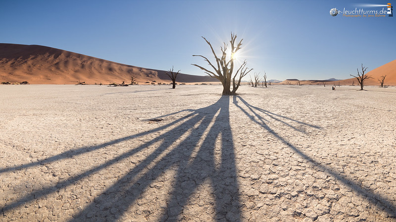 Alone in the Dead Vlei