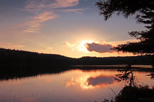 Sunset Silhouette - Lac Alphonse, La Mauricie National Park (Québec, Canada)