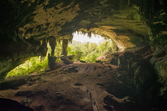 Niah Great Cave