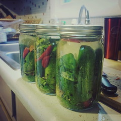 vegetable, pickled cucumber, pickling, green, produce, food preservation, food, canning,