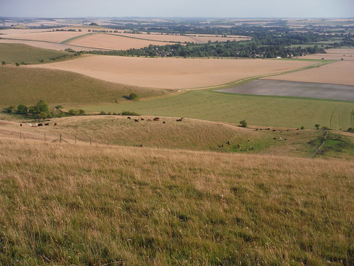 The Vale of Pewsey from Walkers Hill