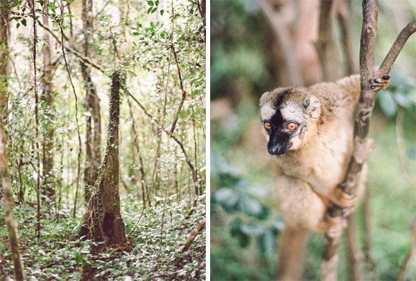RYALE_Madagascar_Blog2_013