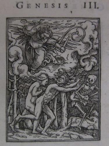 Holbein-004x
