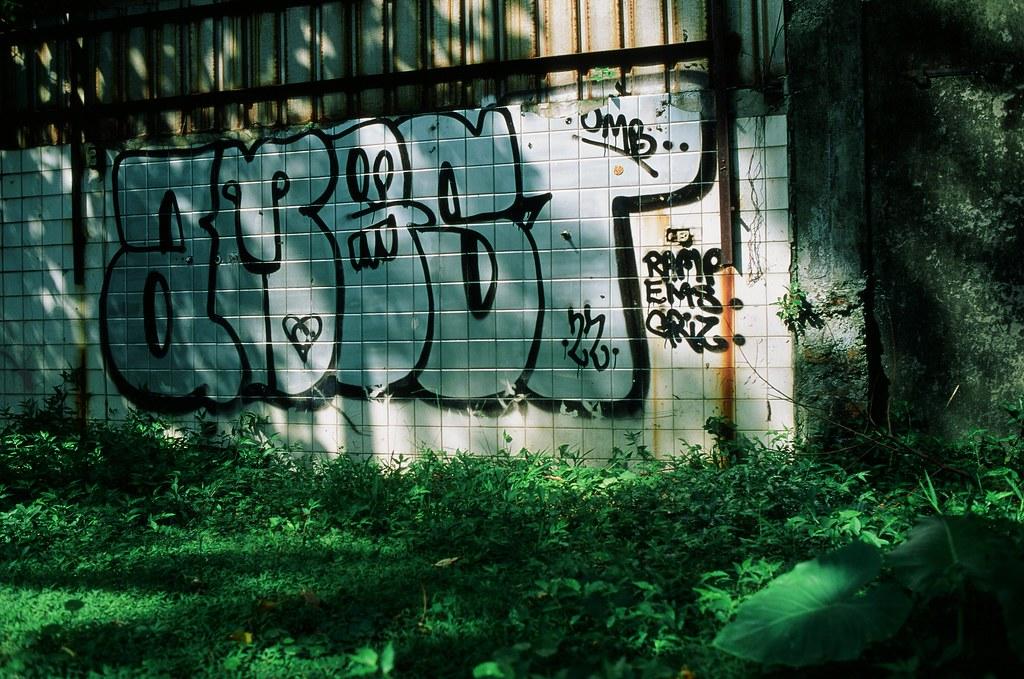 像葉子這樣深呼吸吧! / 台北 Taipei / RVP50 2015/11/06 把眼淚收起來,像葉子這樣深呼吸吧!  Nikon FM2 FUJICHROME Velvia 50 3062-0024 Photo by Toomore
