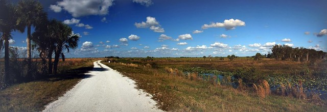 Kissimme Prairie Panorama