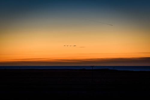 ocean sunset sky water birds landscape island is iceland seaside outdoor dusk nik coas nikviveza2 västlandet nikond750 afsnikkor7020028vrii
