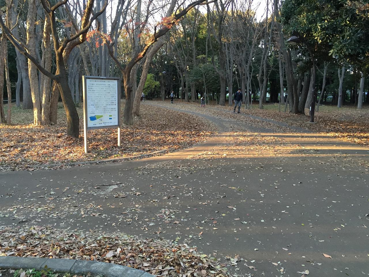 20151219_光が丘 (11)