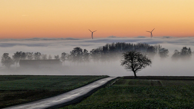 Sonnenuntergang mit Nebel, Panasonic DMC-FZ50