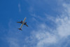 Plane Flying Into SFO by cbyeh