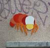 PHILIPPE VIGNAL - Rue de la Mare P1000669  (1)