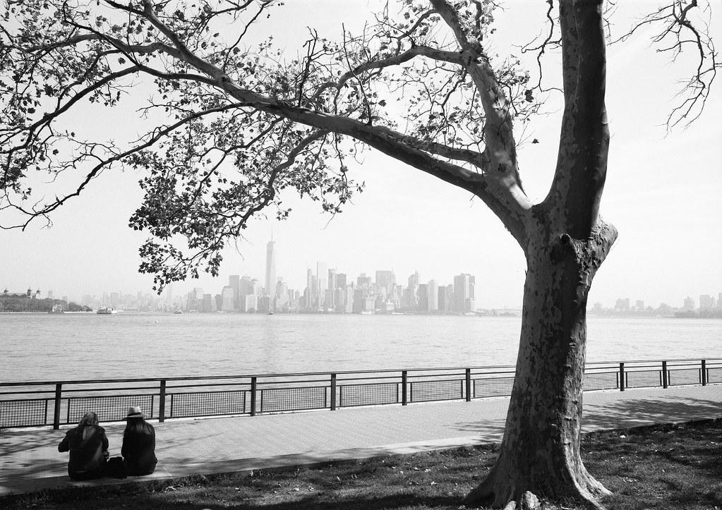 NY film 9