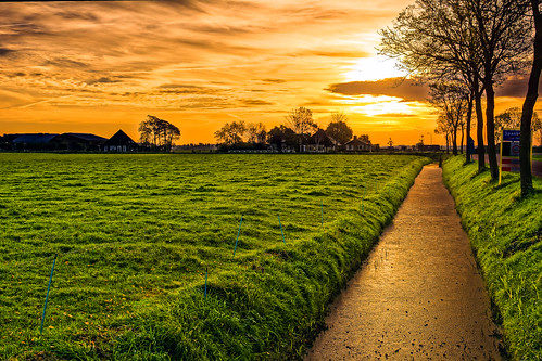trees sky orange green colors grass clouds sunrise landscape nederland nl noordholland hensbroek