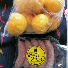 went on a walk and picked up some sausage with yuzu in it and a kilo of yuzu...gonna make marmalade now♡  #minoo #osaka #yuzu #止々呂美 #箕面 #柚子 #大阪 #みのおソーセージ