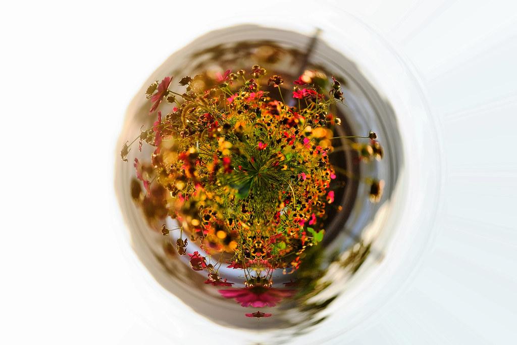 新社花海-後制水晶球版