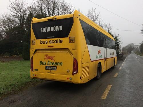 ts17 bus